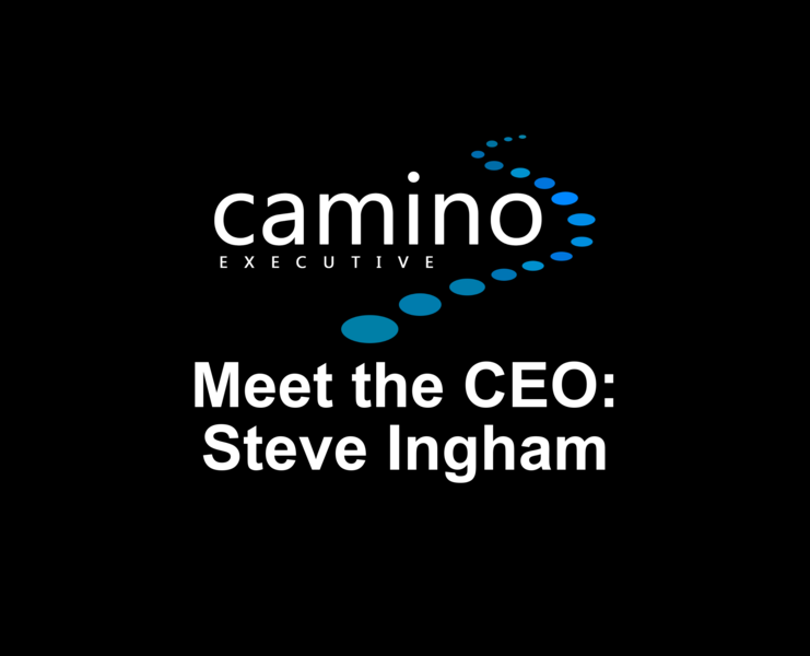 Title   Steve Ingham   Meet The Ceo 3
